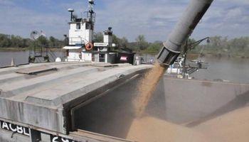 Cerealeras dejan dólares en cuentas bancarias por la falta de demanda