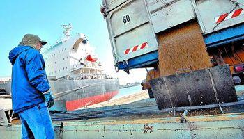 Exportación de granos: liberaron cupos de maíz y trigo