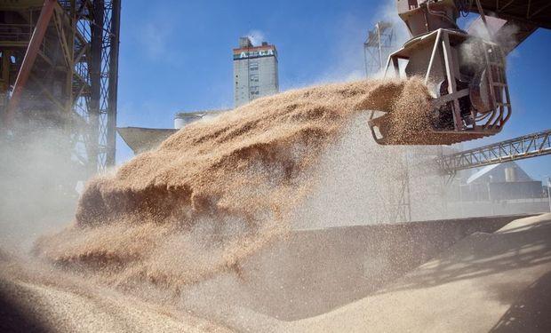 Buscan facilitar a los operadores de granos los trámites contemplando la dinámica de la producción, el comercio y la industrialización.