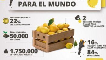 """Apertura de Brasil a los limones argentinos: """"Es un avance para los productores"""""""