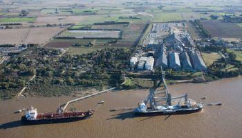 Maíz: exportadores de cereales destacan que el abastecimiento interno estaba asegurado