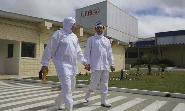 Argentina exporta maíz a Brasil para abastecer la gran demanda de empresas cárnicas