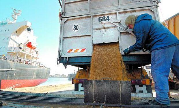 Los agricultores son muy críticos respecto de las restricciones oficiales para la exportación porque aducen que desinflan la demanda y hacen caer los precios locales del cereal.
