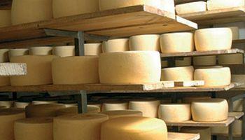Las exportaciones de lácteos repuntaron un 23%