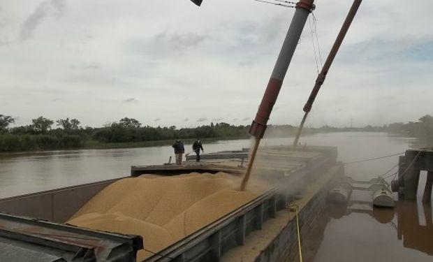 Comercio exterior de soja: sospechan fraude