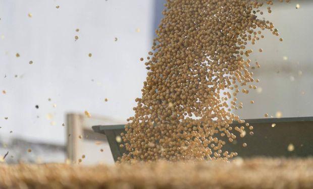 Récord: en pleno coronavirus, la exportación de soja de Brasil se supera mes a mes