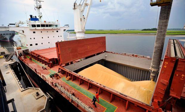 La cosecha total de granos puede esperarse en 121 millones de toneladas, por encima de los 115 millones del ciclo previo.