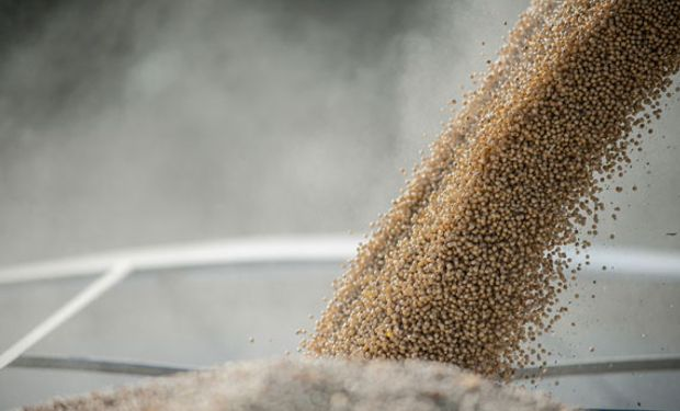 CHINA. 80% de la soja proviene de EE.UU., Brasil y la Argentina.