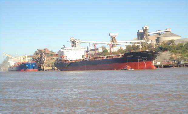 TRIGO. Exportaciones por 5,6 millones de toneladas.