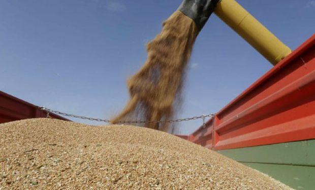 En los primeros siete meses se exportaron 6.965.815 toneladas del cereal.