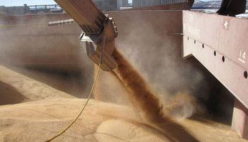 Por primera vez en tres años, Argentina vuelve a exportar trigo a Egipto