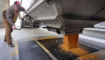 El maíz fue clave para las exportaciones