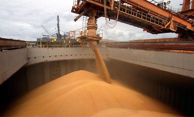 Soja: podrían aplicar un gravamen del 15% a la exportación.