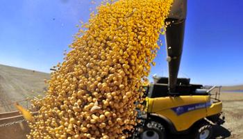 La cadena agroindustrial aportó U$S 12.074 millones durante el primer trimestre