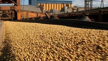 """""""El 66% de las exportaciones son agroindustriales"""""""
