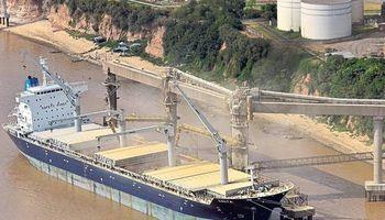 Las exportaciones a Brasil en picada: cayeron casi 24% en el primer semestre