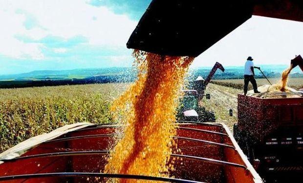 El complejo oleaginoso representó el 30,8% de las exportaciones por un total de u$s8.650 millones.