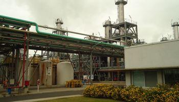 Exportaciones de biodiesel crecieron 59% durante el primer cuatrimestre