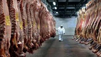 Las exportaciones de carne vacuna en diciembre del 2020 registraron una caída del 44,7%