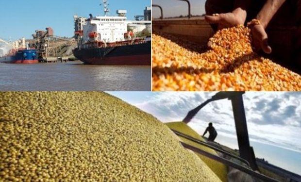 Argentina en el mercado mundial de granos y subproductos.