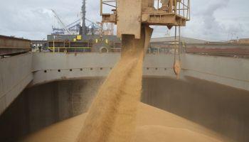 Puerto Bahía Blanca: se recuperan las exportaciones de granos