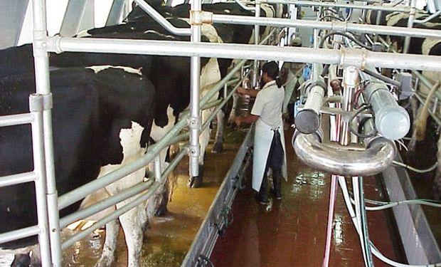 Niegan mayor exportación de lácteos