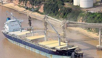Exportadores de granos aseguran que no hay especulación en la liquidación de divisas