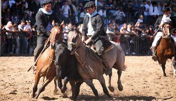 """Raza criolla participa de la exposición """"Nuestros caballos"""""""