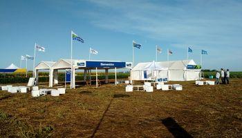 Expo Syngenta: a puro soja y maíz