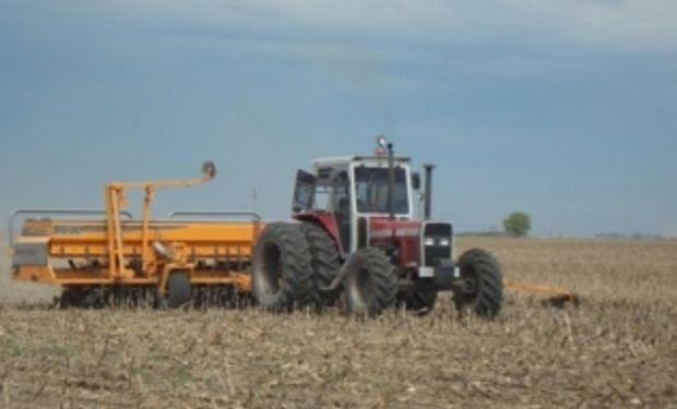 Continúa retrasada la siembra de maíz
