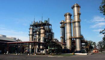 Denuncian decisiones arbitrarias del Gobierno en la fijación del precio del bioetanol