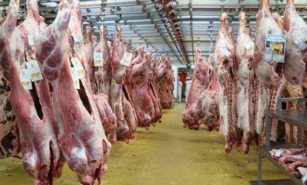 Quien no demuestre fehacientemente haber adquirido los equipos al 28 de febrero próximo no podrá faenar ganado bovino.