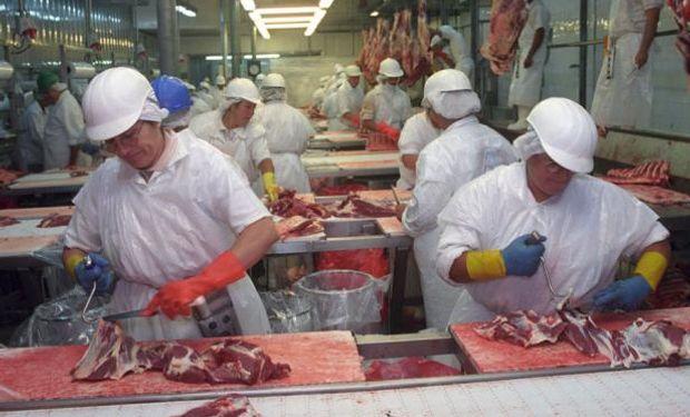 Australia, el gran competidor, hoy está vendiendo a precios por encima de los de Uruguay. Foto: El País.