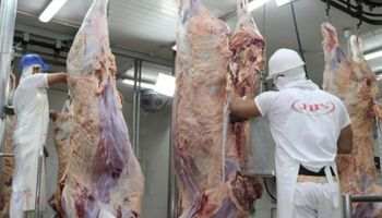 Brasil: JBS reduce faena y provoca exceso de ganado