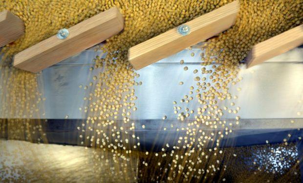 En la última semana volvió a aumentar el compromiso de embarque de poroto de soja desde la Argentina