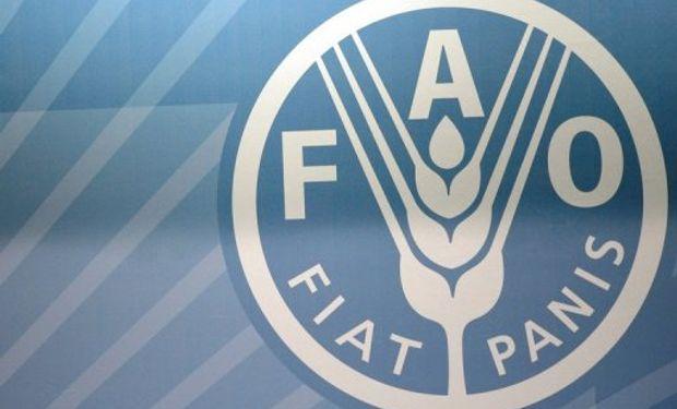 ONU pide ayuda para agricultores filipinos