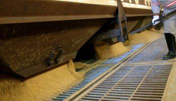 Sube el precio de los alimentos en el mundo: aceites vegetales y productos lácteos lideran el aumento