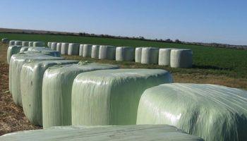 Anuncian por segunda vez la habilitación del mercado chino para fardos de alfalfa
