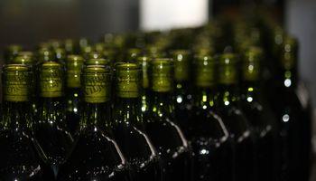 Fecovita invirtió u$s 20 millones en desarrollo de vinos de alta gama para China y Brasil