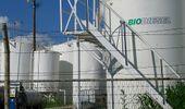 Biocombustibles: el Gobierno va por una nueva ley y aseguró la continuidad de los cortes