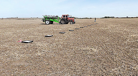 En dos pasos: cómo ajustar la fertilización para obtener hasta 2000 kg más de trigo por hectárea