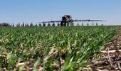 """Fertilización de trigo con Altina: """"Es un equipo con mucha capacidad de trabajo diario"""""""