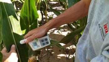 ¿Cuál es el poder de compra de insumos de la soja, el trigo y el maíz? Una sola relación es negativa contra el promedio