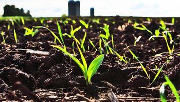 Los fertilizantes para el 2025 y novedades en 15´, en el Simposio Fertilidad 2017