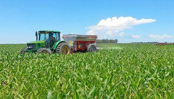 En apenas un mes, el poder de compra del maíz contra los fertilizantes mejoró hasta un 23 %