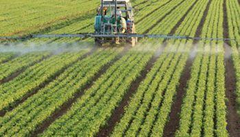 ¿Por qué no fertilizamos cómo debemos?