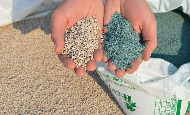 Nube nutricional y nanopartículas: cómo funciona el fertilizante diseñado para semilla que maximiza la superficie de contacto