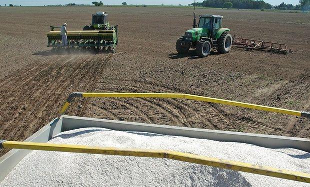 Fertilización, una apuesta segura para el bolsillo y el suelo