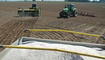 Por la crisis, cayó 84.000 toneladas la venta de fertilizantes