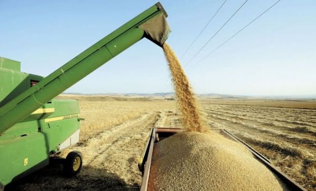 Conforman el Consejo de Fiscalización del Fideicomiso de trigo